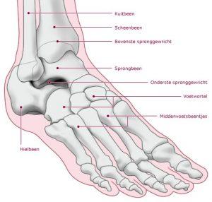 Osteochondraal letsel van de enkel